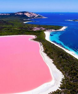 A Pink Lake That Science Cannot Explain