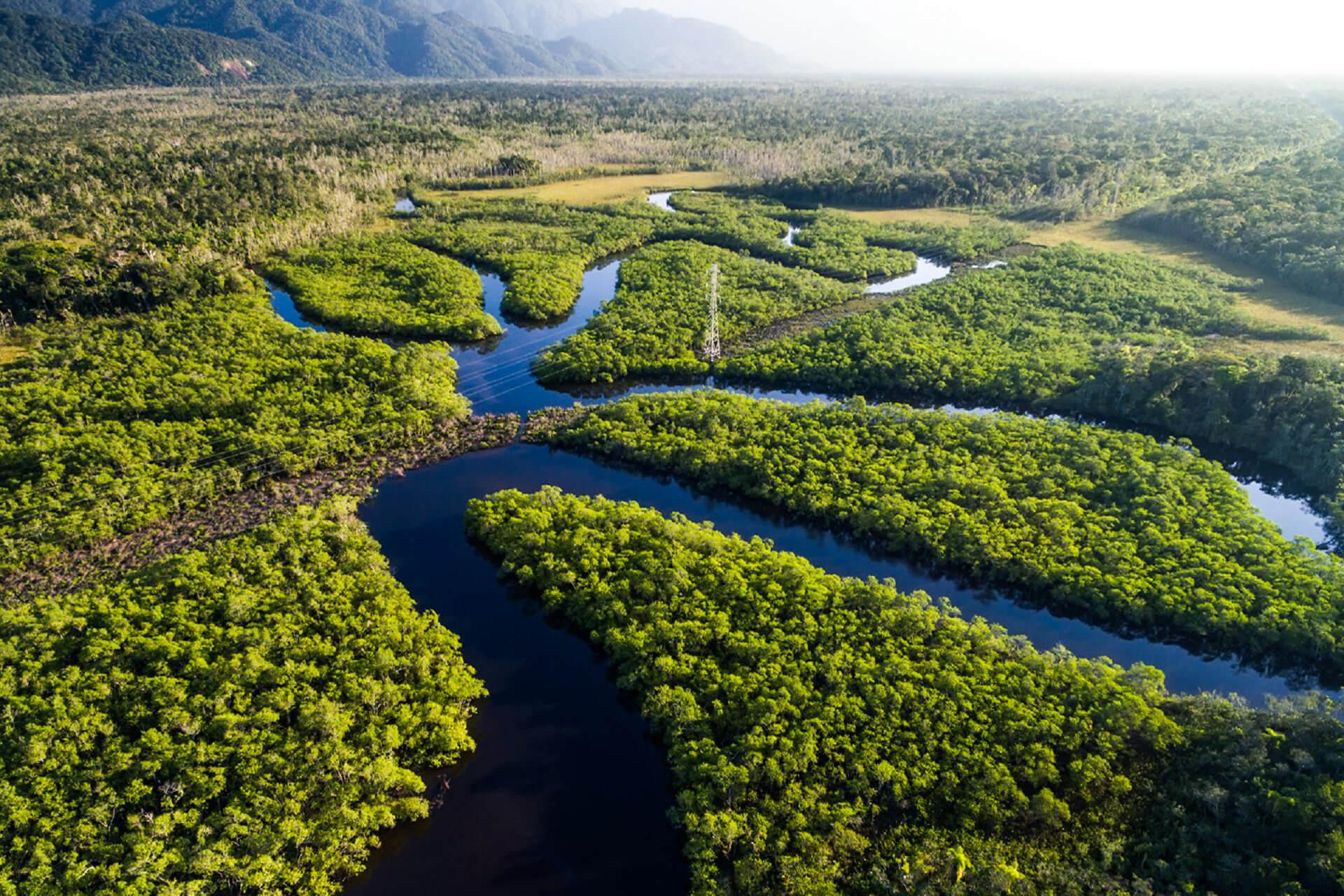 Beaches of the Amazon, Brazil