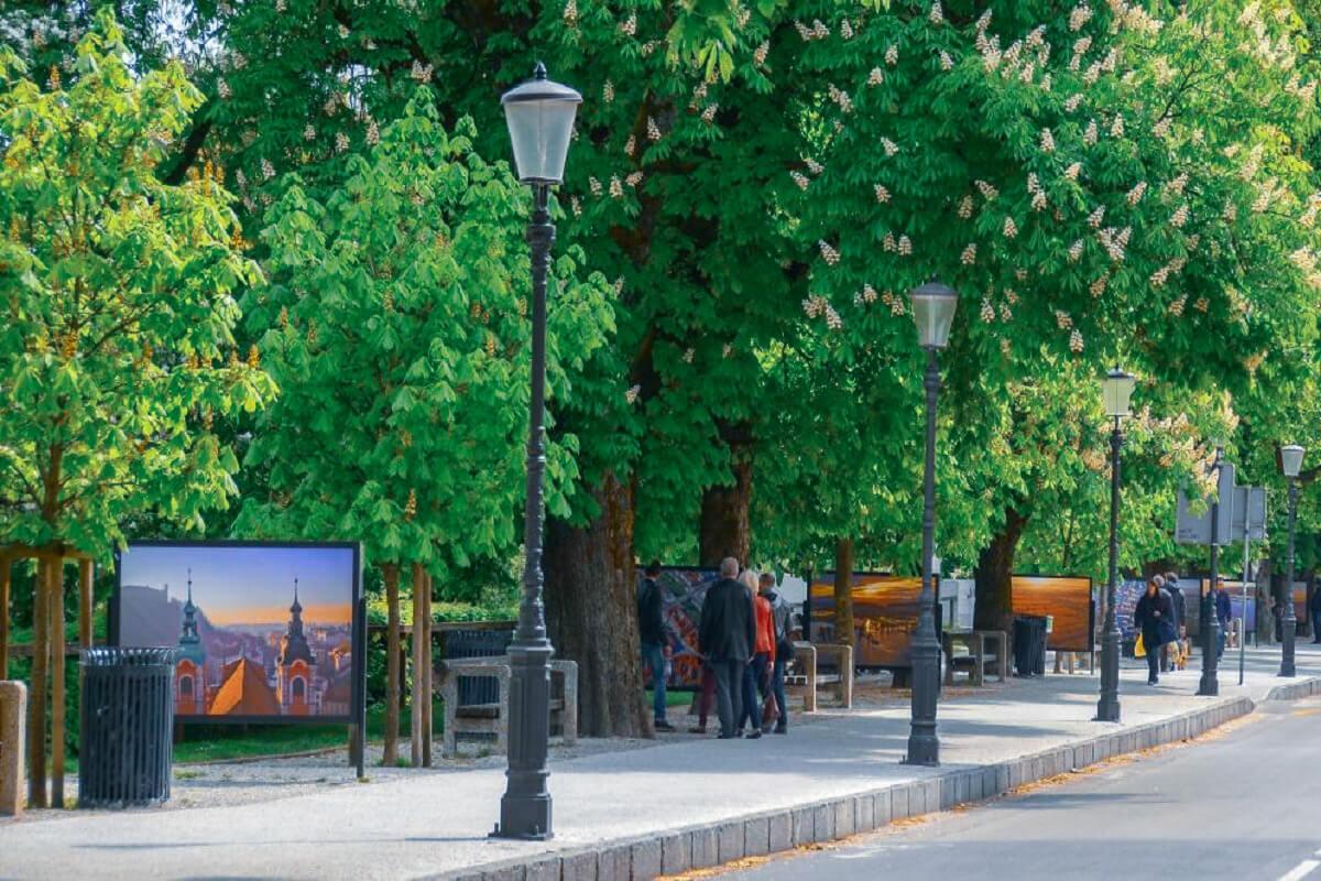 Krakovski nasip - How To Enjoy For Free in Ljubljana