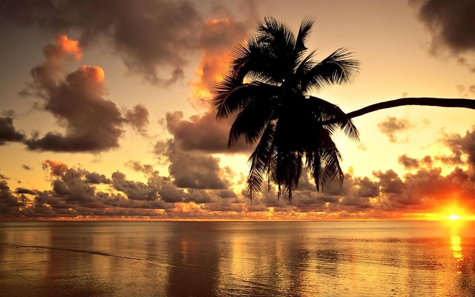 Mauritius Enchanting Island