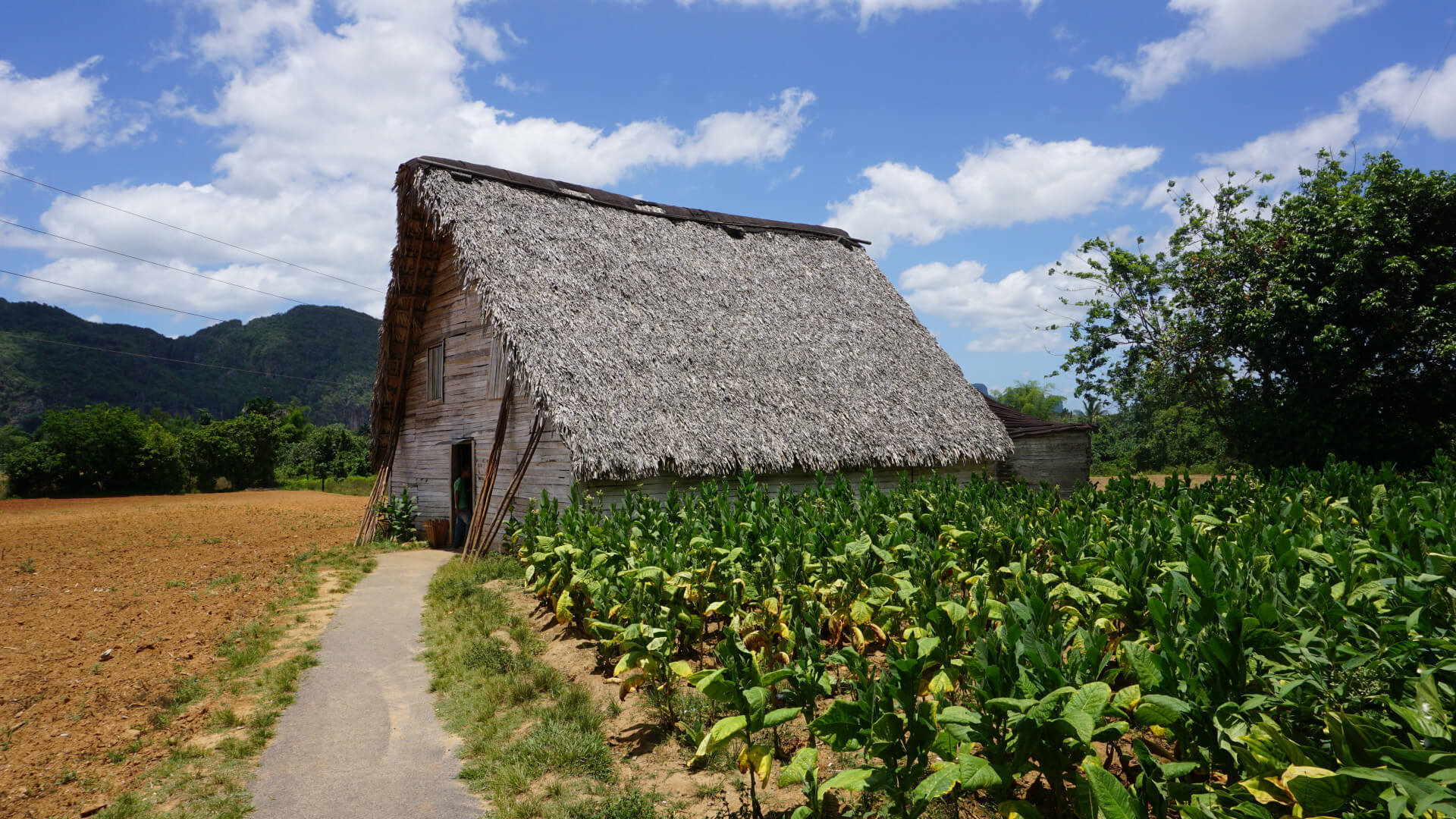 Vinales - The intact jewel of Cuba